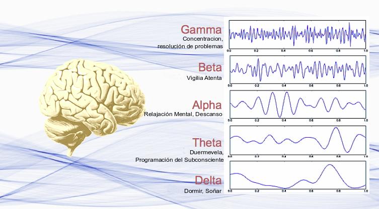 OndasCerebrales-Estados-de-Consciencia-EEG